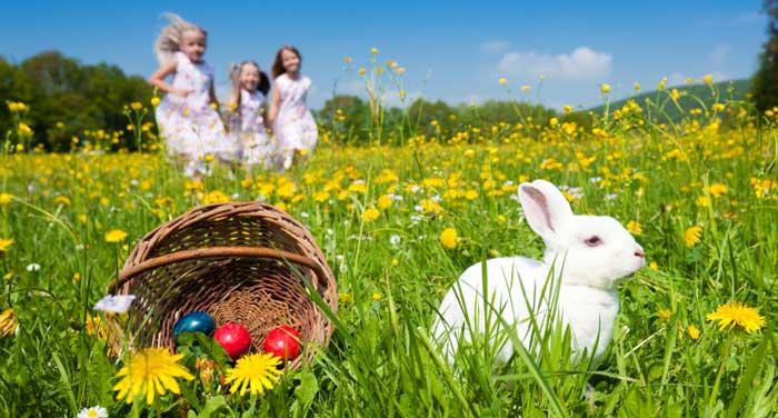 Easter in Masseria